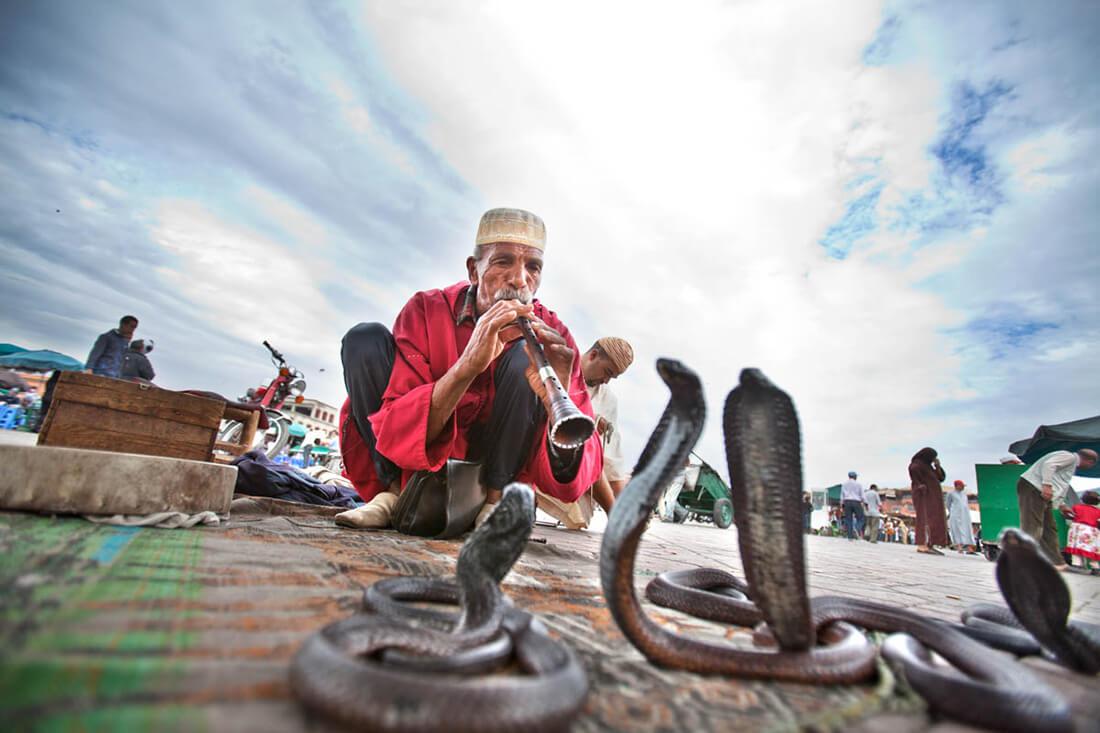 Krotitelj zmija trg Džema el fna.jpg